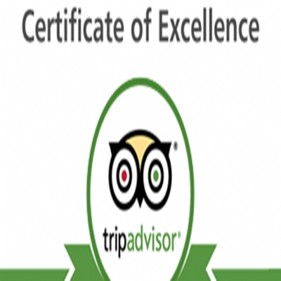 How is about clients reviews about us on Tripadvisor